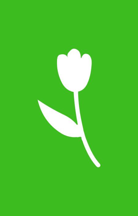 Lente